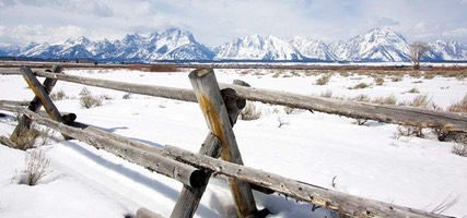 Day 3: Fence, Grand Teton National Park