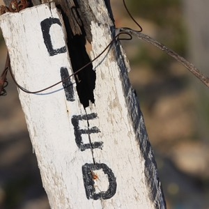 Died, Grave Marker, Terlingua Ghost Town, TX